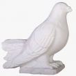 a14-2-golub